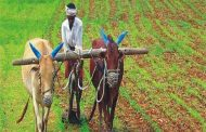 Transfer of PM Kisan Samman Nidhi to farmers' account will be done tomorrow, know how many families will get benefit